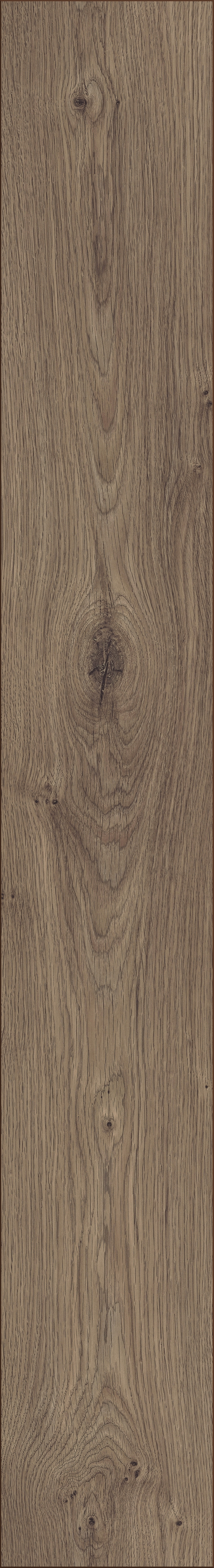 Kronotex robusto atlas oak coffee d 3591 from kronotex for Robusto laminate flooring