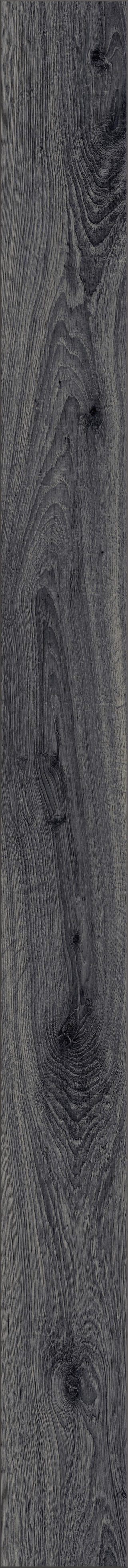 kronotex amazone laminat prestige eiche grau d 4167 von kronotex. Black Bedroom Furniture Sets. Home Design Ideas